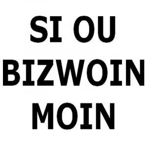 Si ou Bizwoin moin